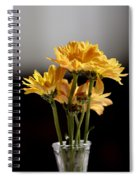 You Are The Color In My Life Spiral Notebook