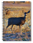 You Have Her Attention Spiral Notebook