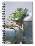 You Look'n At Me Spiral Notebook