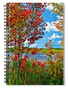 Young And Brash Spiral Notebook