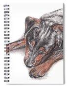 Young Black Dog Portrait Spiral Notebook