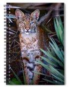 Young Bobcat Spiral Notebook