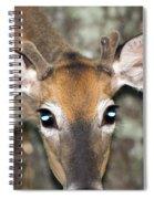 Young Buck Spiral Notebook