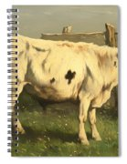 Young Bull Spiral Notebook