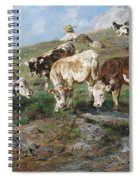 Young Cattle In Tyrol Spiral Notebook