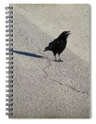 Young Cawing Crow Spiral Notebook