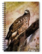 Young Eagle Pose II Spiral Notebook