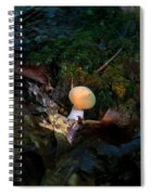 Young Lonely Mushroom 2 Spiral Notebook