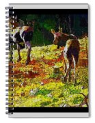 Young Moose In Autumn Spiral Notebook