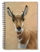 Young Pronghorn Spiral Notebook