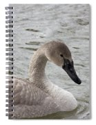 Young Trumpeter Spiral Notebook