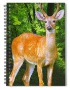 Young Whitetailed Deer Buck Digital Art Spiral Notebook
