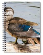 Young Wood Duck Spiral Notebook