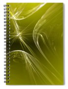 Your Possible Pasts Spiral Notebook