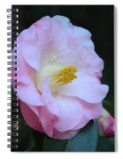 Youthful Camelia Spiral Notebook