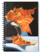 Youtube Video - Memories Of Fall Spiral Notebook