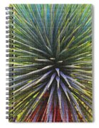Yucca At The Arboretum Spiral Notebook