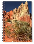 Yucca Badlands And Colors Spiral Notebook