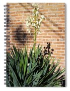 Yucca In The Morning Spiral Notebook