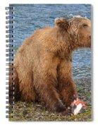Yummy Salmon Spiral Notebook