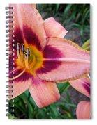 Zagora Daylilies Spiral Notebook