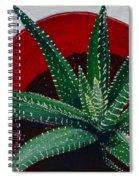 Zebra Cactus In Red Glass Spiral Notebook
