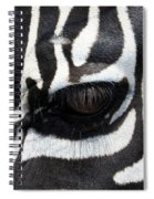 Zebra Eye Spiral Notebook