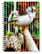 Zebra Finch Spiral Notebook