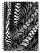 Zebra Folds Spiral Notebook