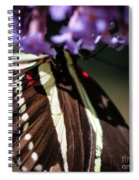 Zebra Heliconian Heliconius Charithonia Spiral Notebook