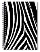 Zebra Hide Spiral Notebook