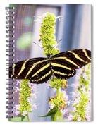 Zebra II Spiral Notebook