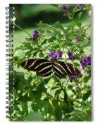Zebra Longwing Butterfly On Flower Spiral Notebook