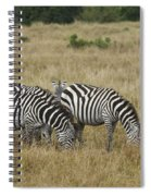 Zebra On Masai Mara Plains Spiral Notebook