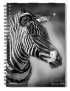 Zebra Profile In Black And White Spiral Notebook