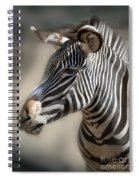 Zebra Profile Spiral Notebook