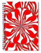 Zebra Red Swirling Kaleidoscope  Spiral Notebook