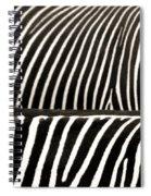 Zebra Stripes Spiral Notebook