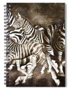 Zebras Spiral Notebook