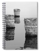 Zed Black And White Spiral Notebook