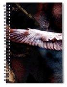 Zen Archer Spiral Notebook
