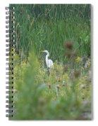 Zen Egret Spiral Notebook