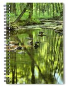 Zen In The Forest Spiral Notebook