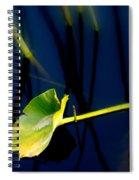 Zen Photography V Spiral Notebook