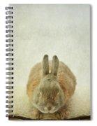 Zen Rabbit  Spiral Notebook