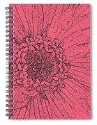 Zinnia In Pencil  Spiral Notebook