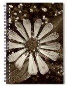 Zinnia Monochrome Spiral Notebook