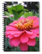 Zinnias Spiral Notebook
