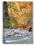 Zion Narrows Spiral Notebook