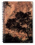 Zion National Park Canyon Walls With Silhouetted Trees In Front  Spiral Notebook